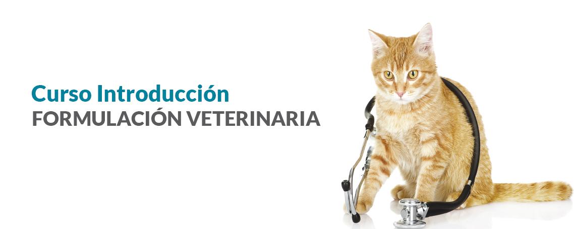 GUINAMA presenta el curso: La Formulación Magistral como herramienta terapéutica en veterinaria